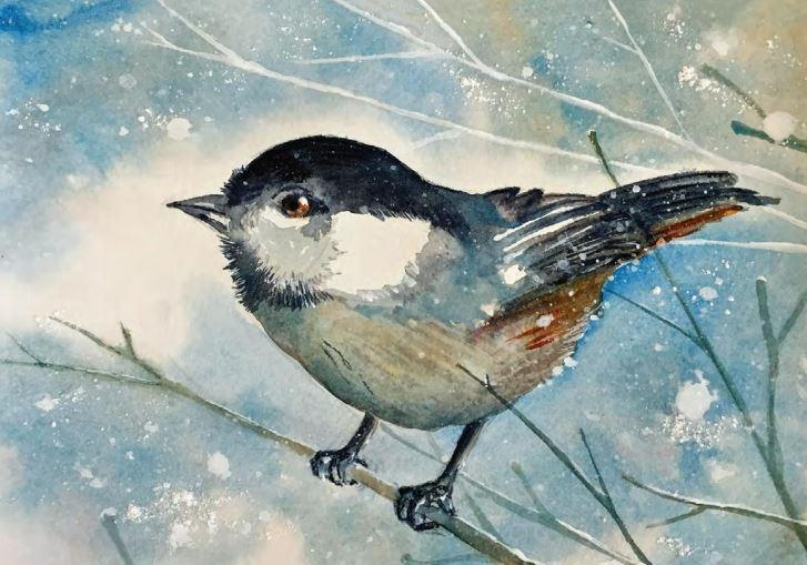 Olli Catalog cover, bird on tree branch